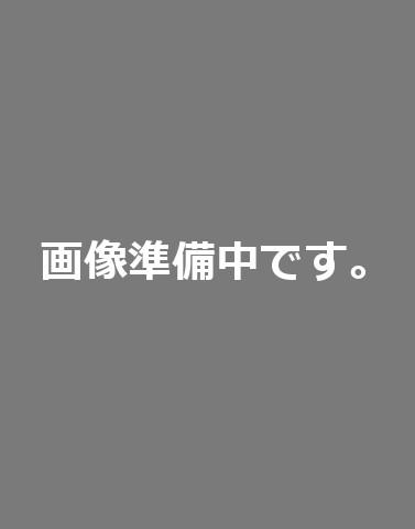 Stability 競技 Mini オレンジ